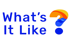 What's It Like? Logo